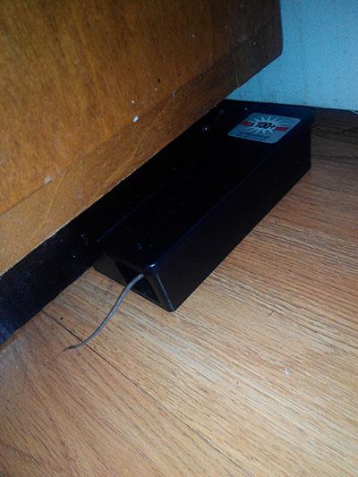 Primer ratón en trampa electrónica